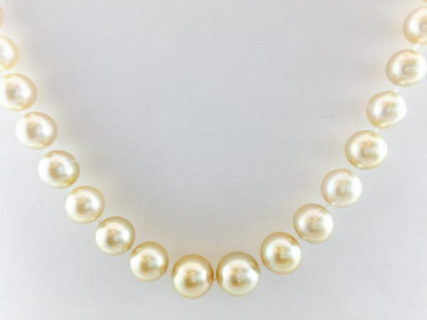 Light colored pearl necklace